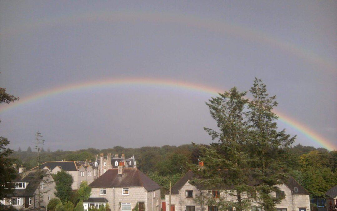 woestenenk legal regenboog